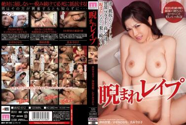 HBAD-336 Sister in law Aki Sasaki To Seduce The Brother in law Can Not Stand To Be Confronted To Big